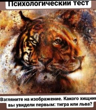 тест что вы увидели первым на картинке пантера львы главных