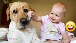 Смешные видео 2020 ● Приколы с животными - Самые милые собаки и дети, смешные моменты из жизни детей