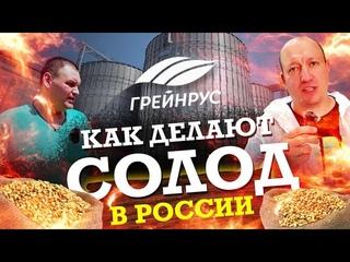 Как делают СОЛОД для пива в России. Завод Курский солод