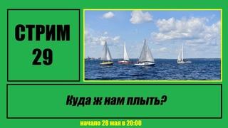 "Стрим #29 ""Дмитрий Евгеньевич: Куда ж нам плыть?"""