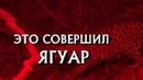 КРИМИНАЛЬНЫЕ ХРОНИКИ - Следствие вели, 14 сезон 7 серия - Это совершил Ягуар, 2019 год, 16.