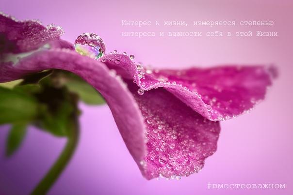 Жизнь тем и хороша, что в ней много изменений, много того что нельзя предсказать, много того, что не всегда соответствует нашим ожиданиям