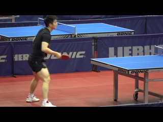 Fan Zhendong BH | FH Topspin Training 2019