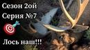 Аляска. День 6. Успешная охота на лося с луком на гону.
