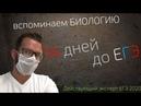 12 дней до ЕГЭ | Подготовка к ЕГЭ по биологии | Решаем СТАТГРАД 05112019