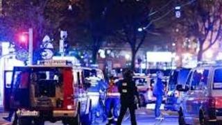 Austria's terror attack near a synagogue on 103rd anniversary of Balfour Declaration, Nov. 2, 2020