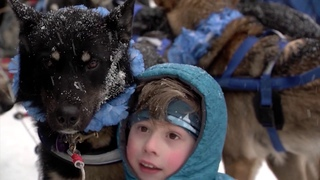 Recap: The 2020 Iditarod Trail Sled Dog Race