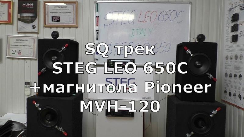 STEG LEO 650C полный тест отзывы